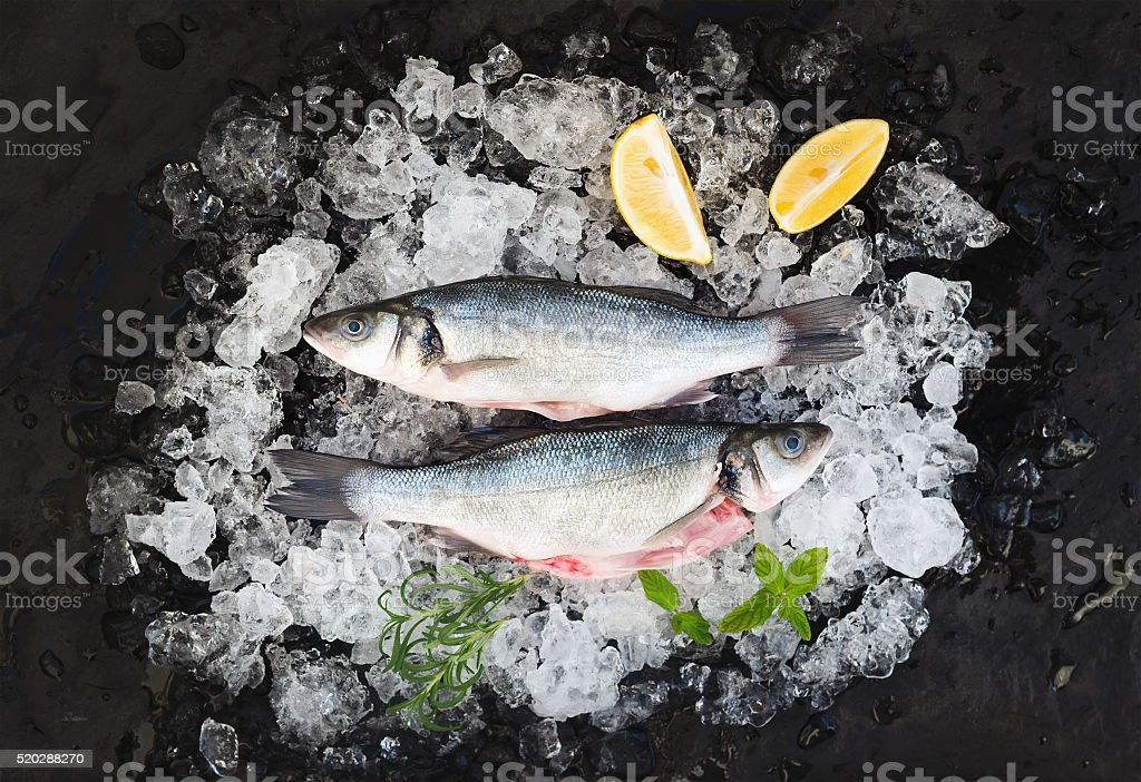 Raw seabass with lemon and rosemary on chipped ice over stock photo