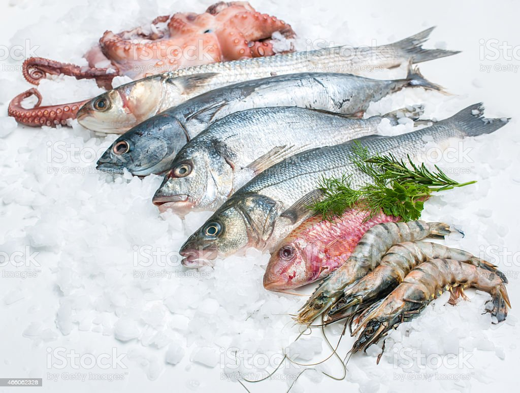 Raw seafood fish on a bed of ice stock photo