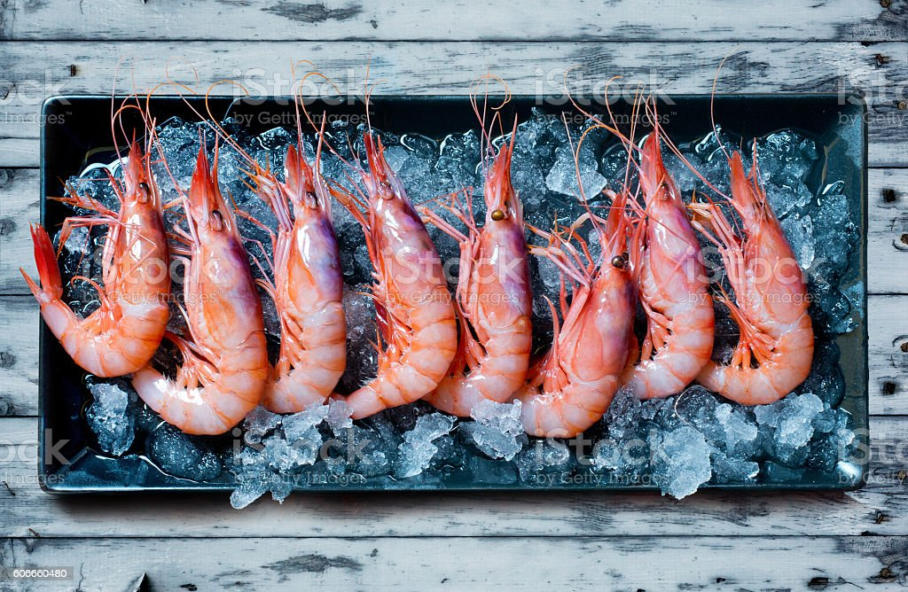 Raw shrimp tray with ice on blue wooden table stock photo