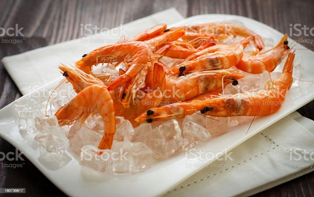 Raw Shrimps royalty-free stock photo