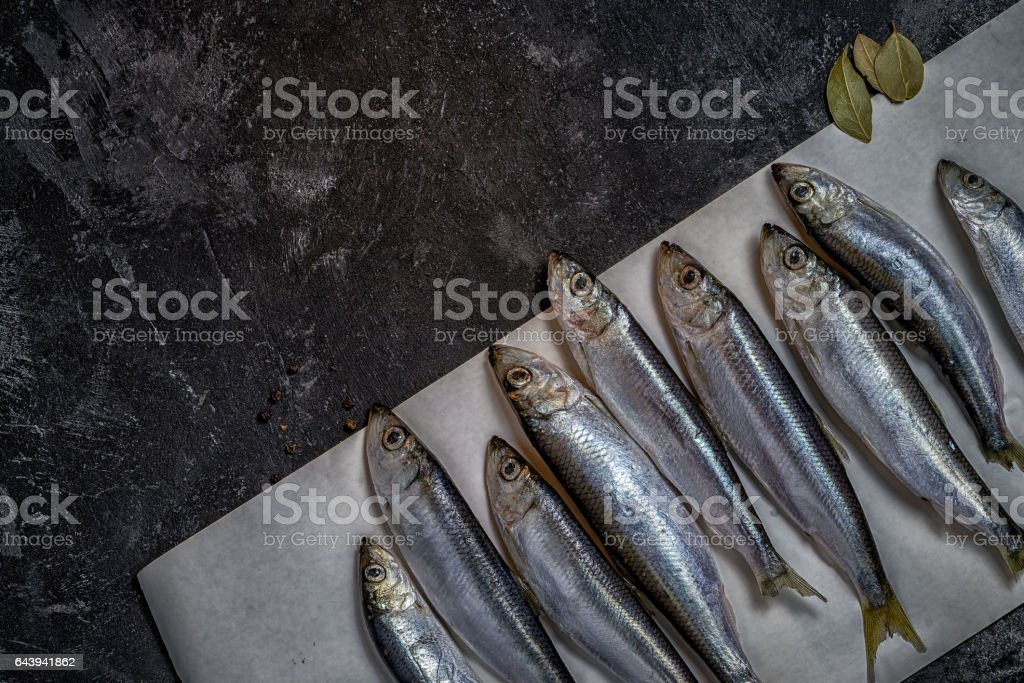 raw small sprat like forage fishes on a paper stock photo