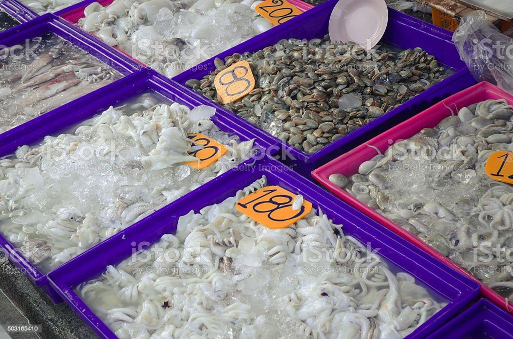 Raw Squid on sale in Thai market. stock photo
