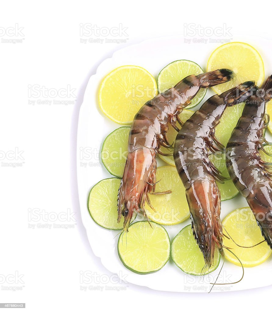 Raw tiger shrimps on plate. stock photo