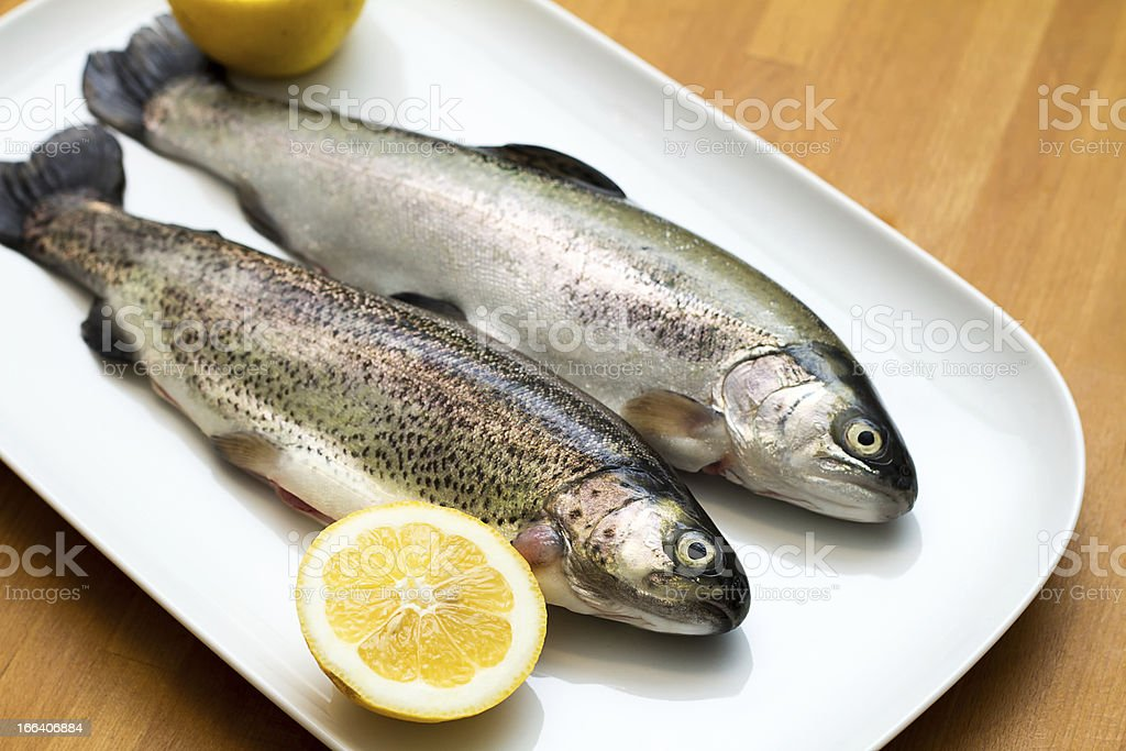 Raw trout fish with lemon slices stock photo