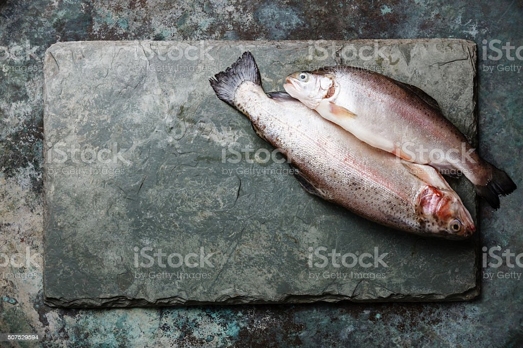 Raw uncooked Forelle Fisch – Foto