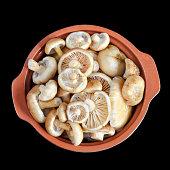 Raw wild mushrooms in a ceramic pot on  black background