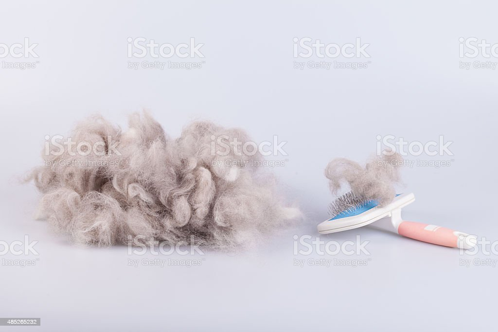 Raw wool yarn coiled into a ball stock photo