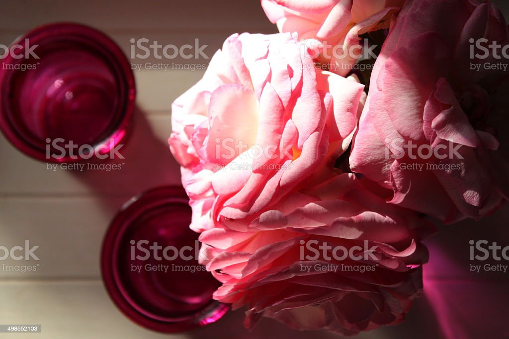 Ray of light on pink roses royalty-free stock photo