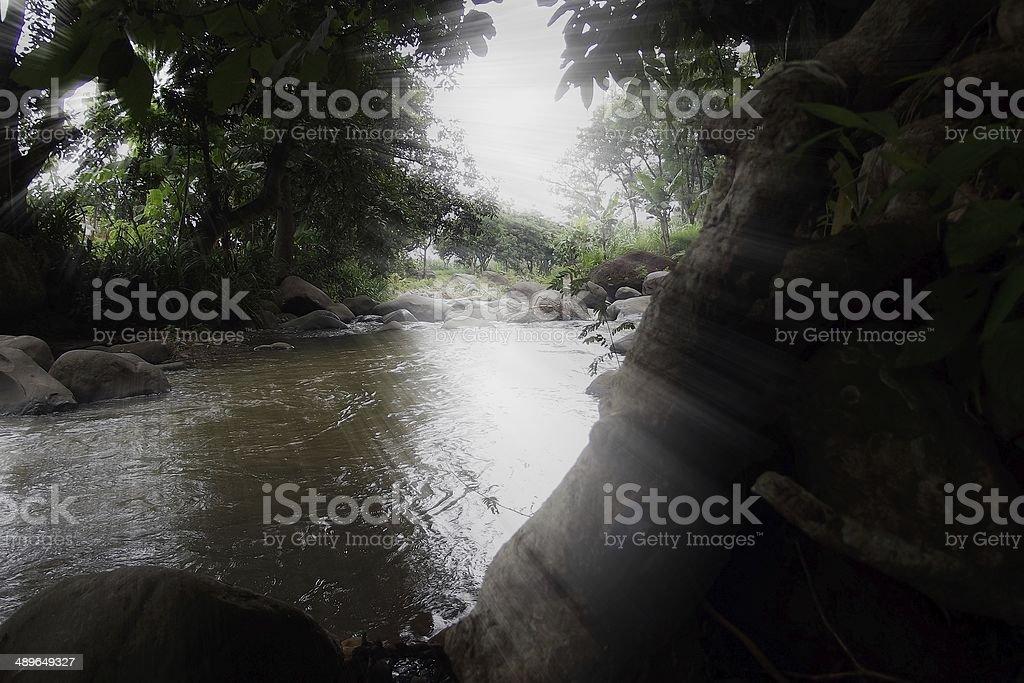 ray of light stock photo
