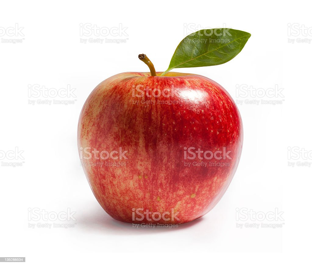 rayal gala apple on white stock photo