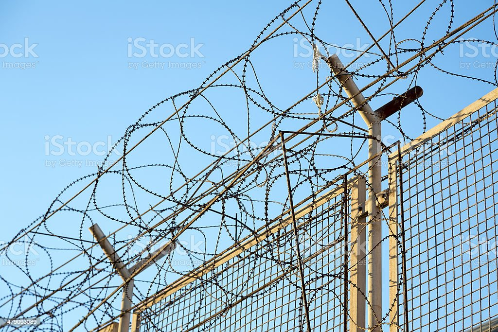 razor wire barbed top of security fence stock photo