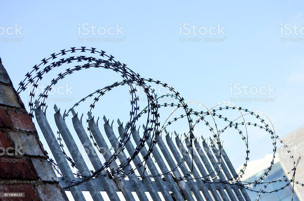 Razor wire stock photo