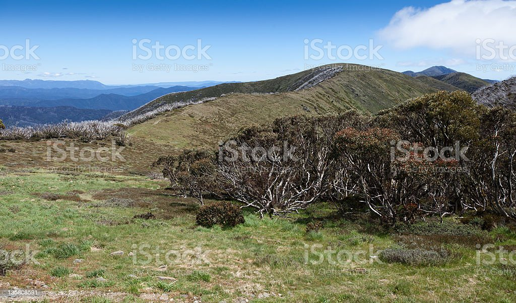 Razorback Ridge to Mount Feathertop stock photo