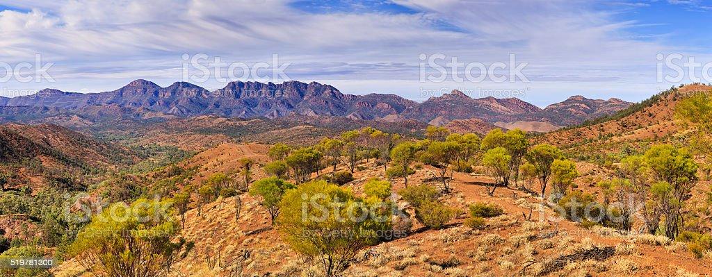 FR WP Razorback vert panorama stock photo