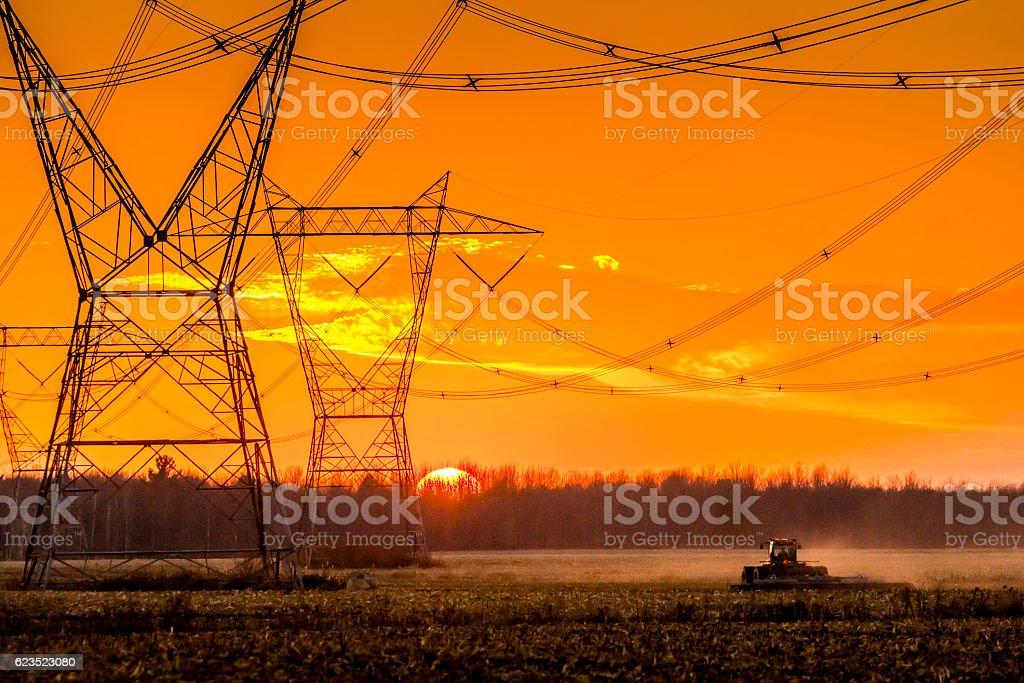 Récolte du Maïs en automne, Pylônes électriques stock photo