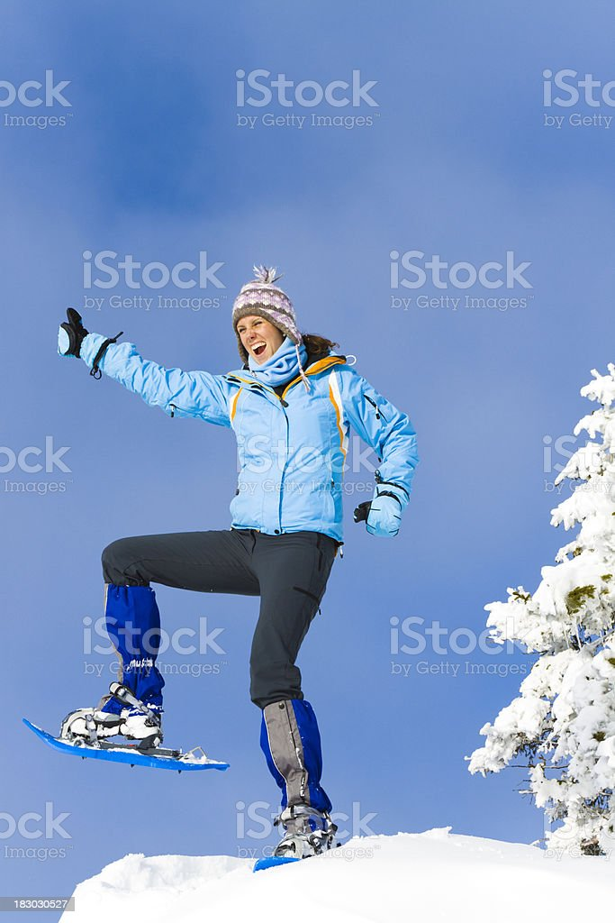 reached the summit royalty-free stock photo