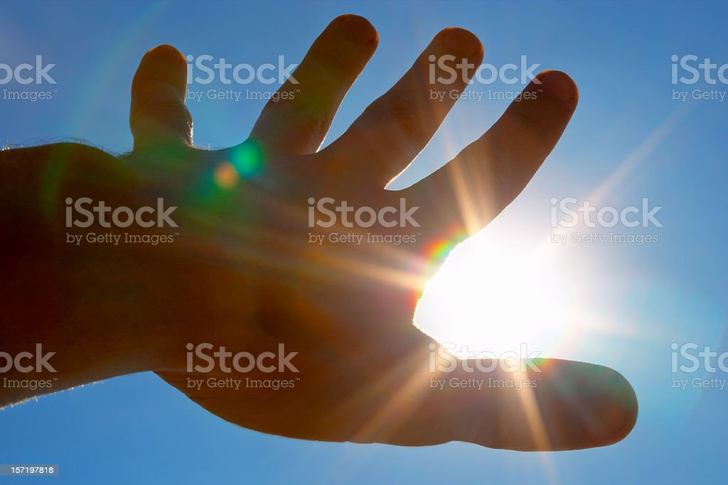 Reaching the sun royalty-free stock photo