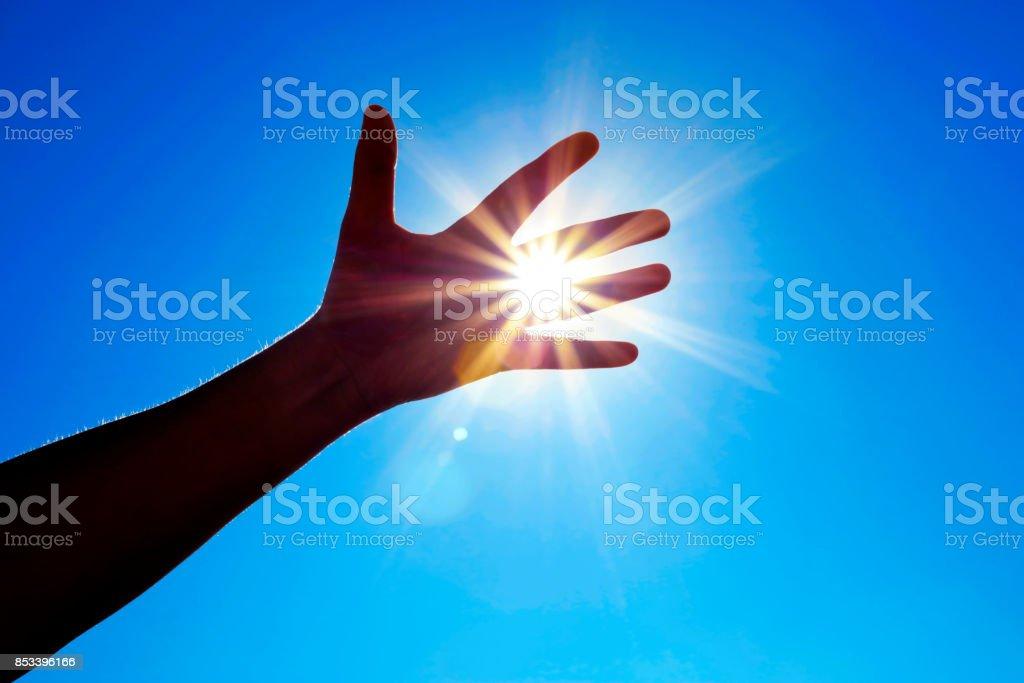 Reaching the sun (50 megapixels) stock photo