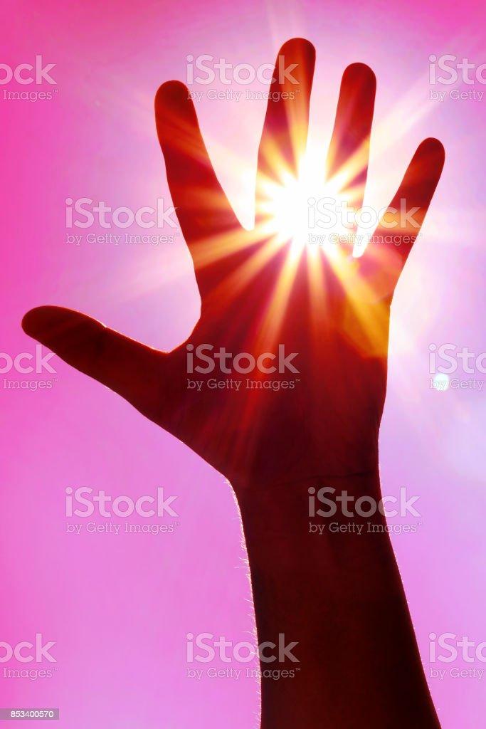 Reaching the sun stock photo