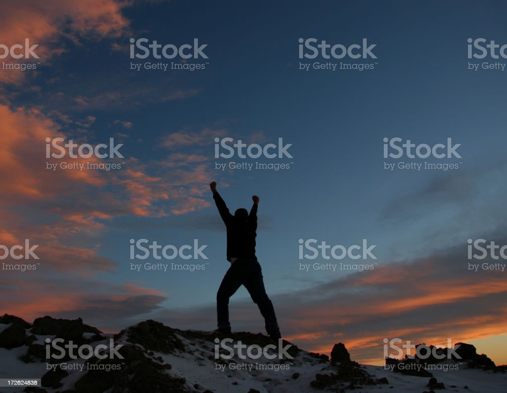 Reaching the Top royalty-free stock photo