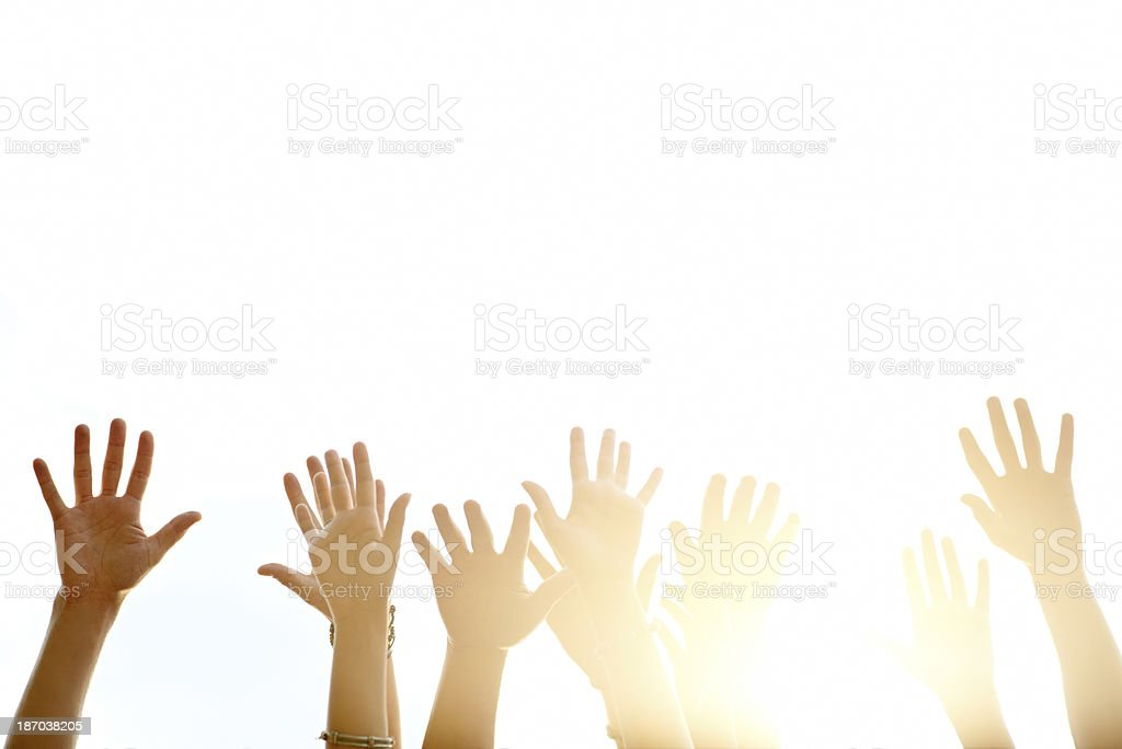 Reaching to the sun royalty-free stock photo