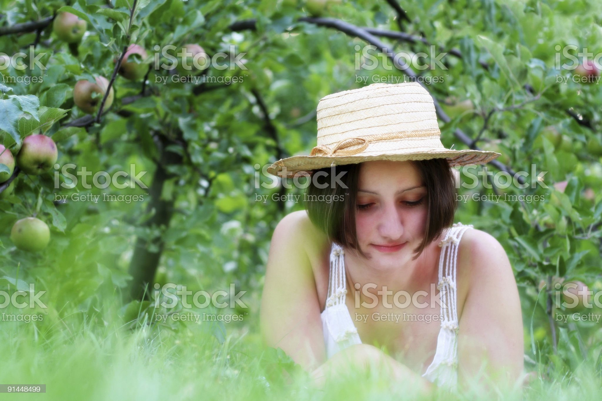 Readind under apple tree royalty-free stock photo