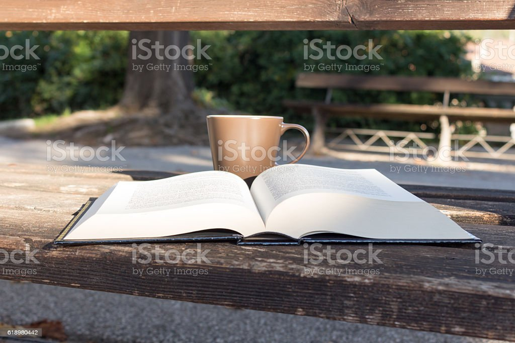 Reading a book and drinking a tea in the park stock photo