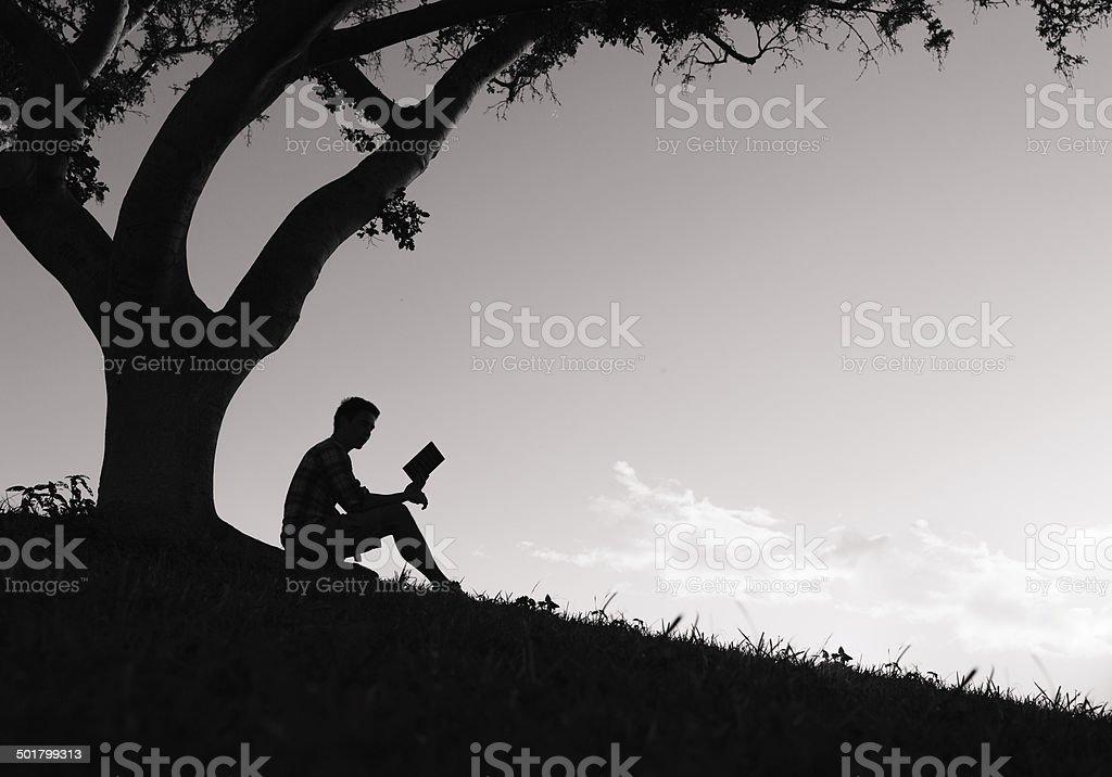 Reading a book. stock photo