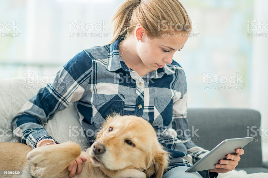 Reading at Home with a Dog stock photo