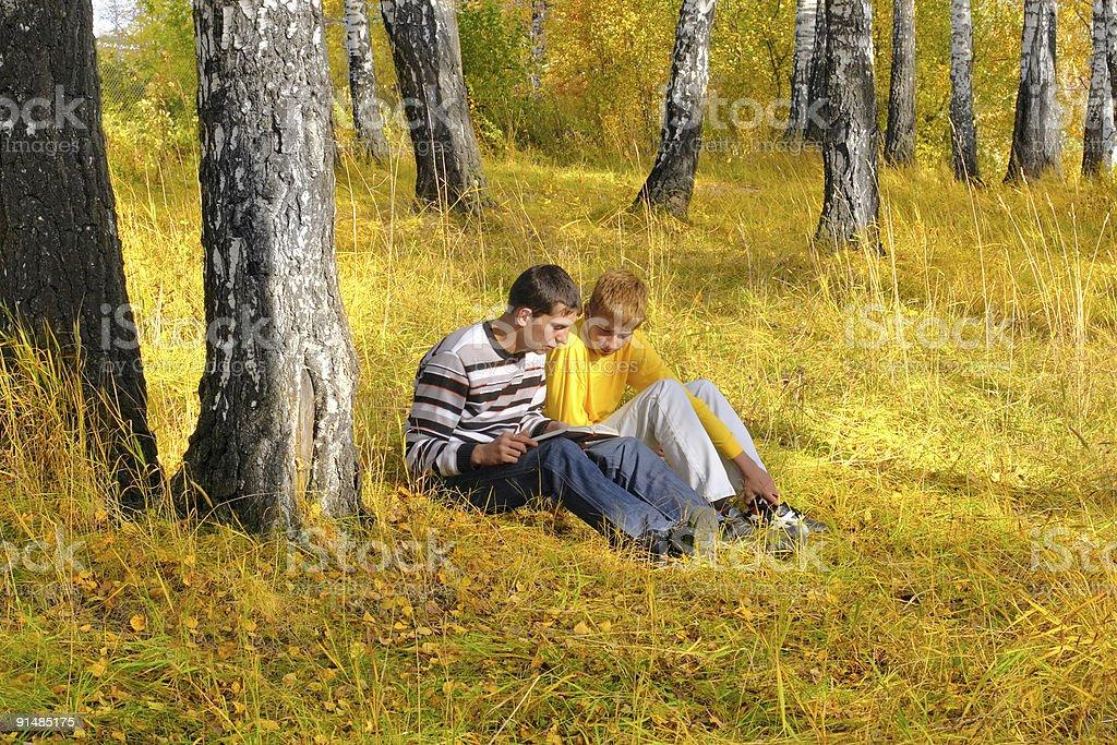 reading boys royalty-free stock photo