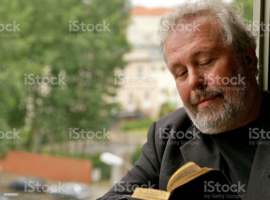 Reading by the Window royalty-free stock photo