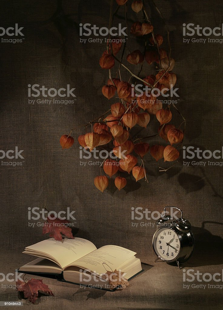 Reading late in the night. Still-life stock photo