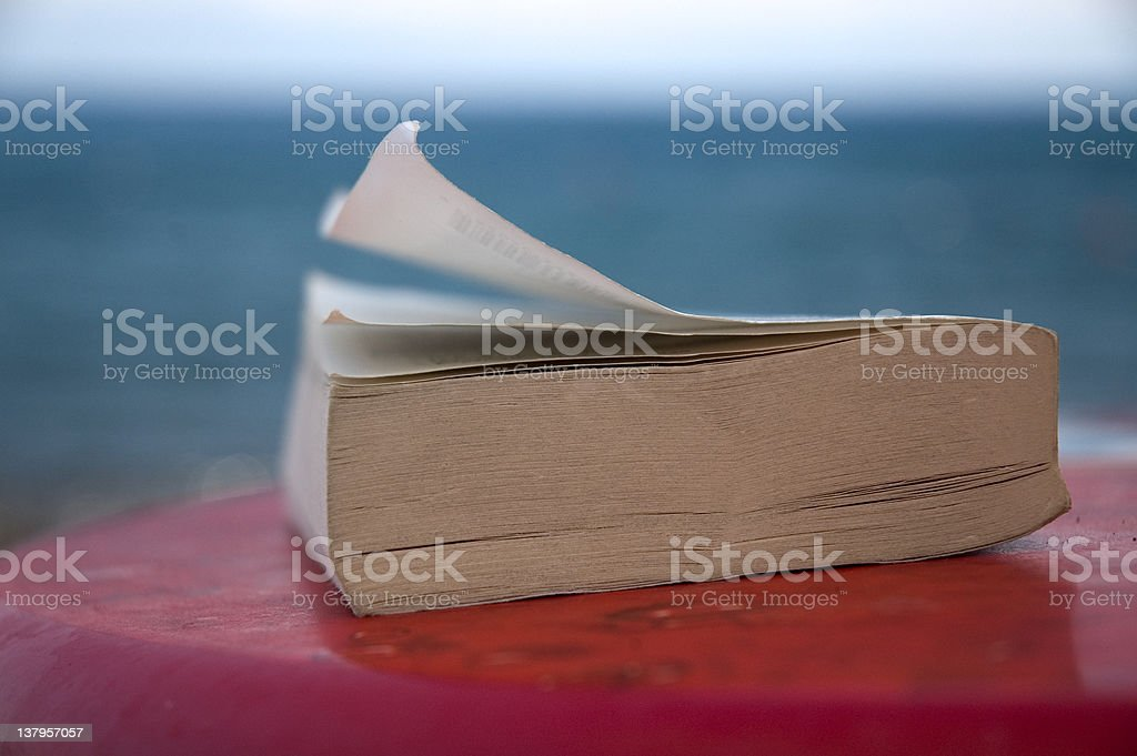 Reading on vacation royalty-free stock photo