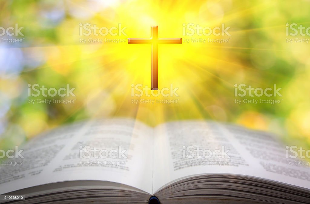 Reading the Bible stock photo