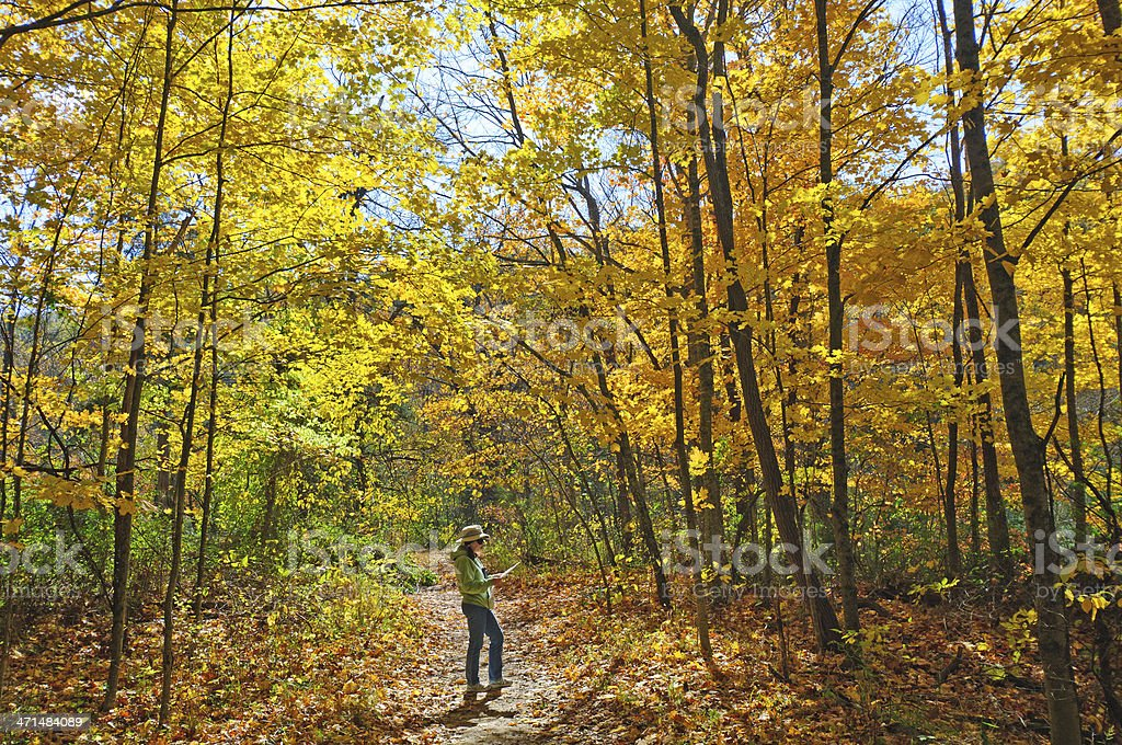 Reading the Map on fall colors hike stock photo