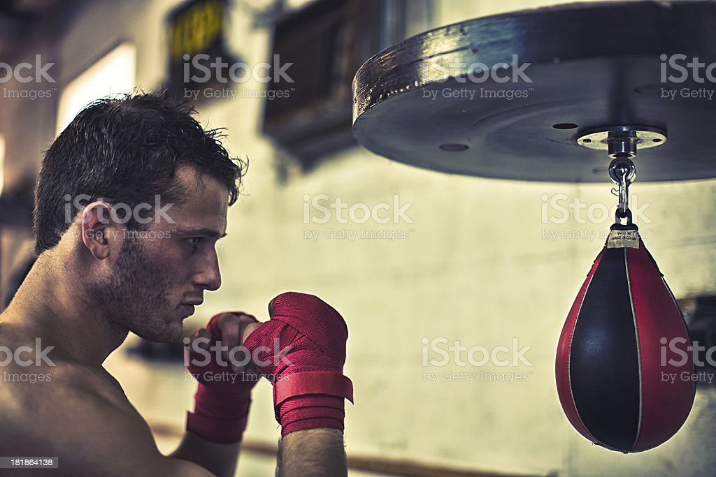 ready boxer on the speed bag royalty-free stock photo