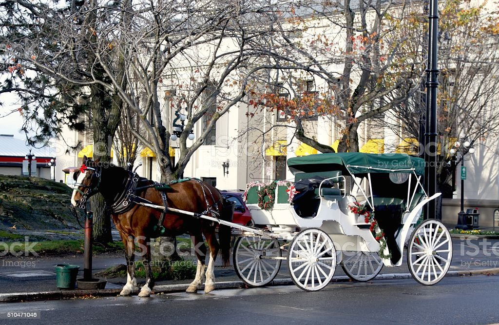 Ready For A Carriage Ride stock photo