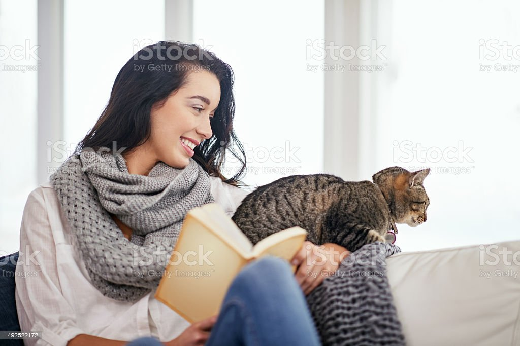 Ready for a story kitty cat? stock photo