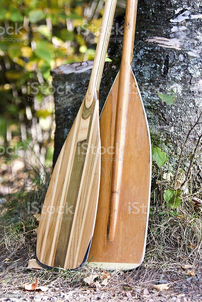 Ready Paddles royalty-free stock photo