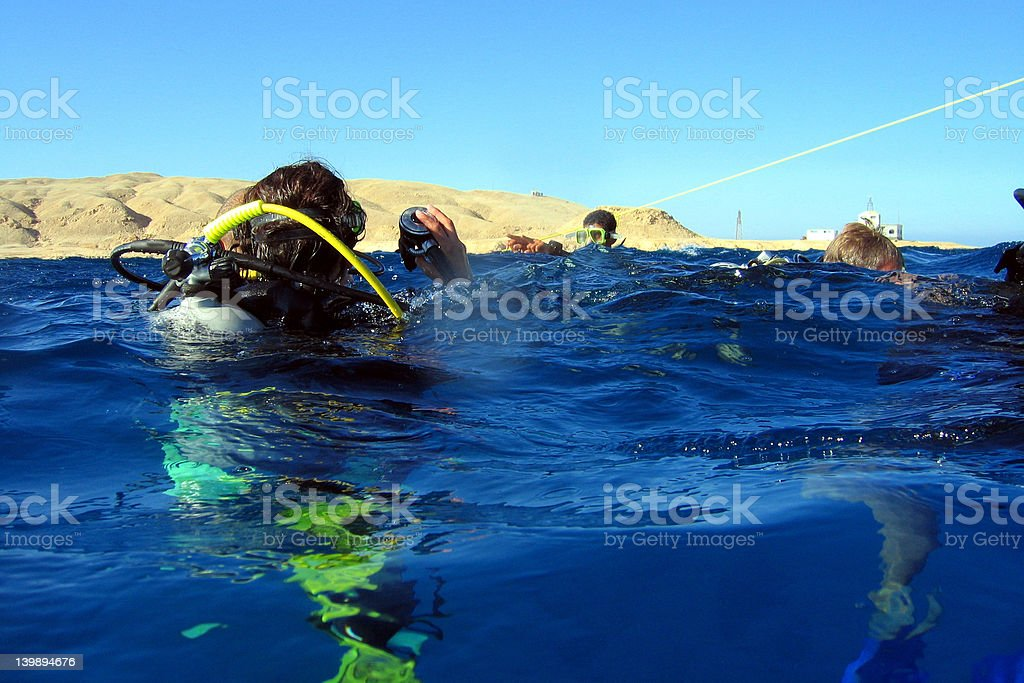 Ready to dive? royalty-free stock photo