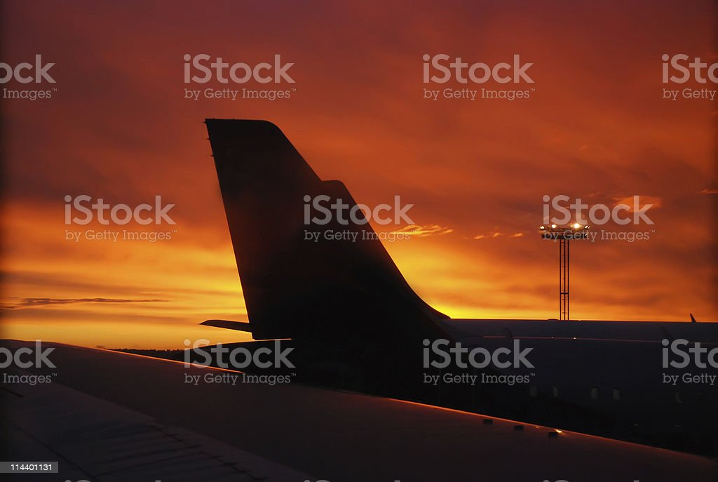 Ready to Fly! royalty-free stock photo
