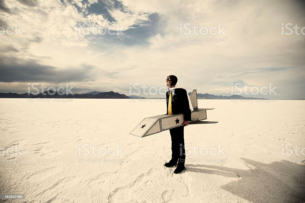 Ready to Fly royalty-free stock photo