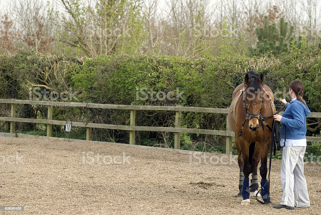 ready to lunge stock photo
