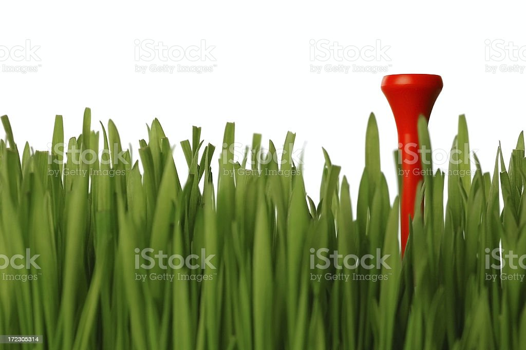 Ready to tee off royalty-free stock photo
