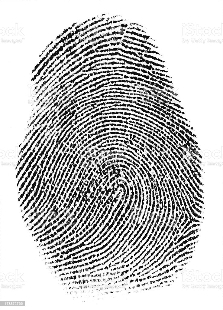 Real Fingerprint Super Macro royalty-free stock photo
