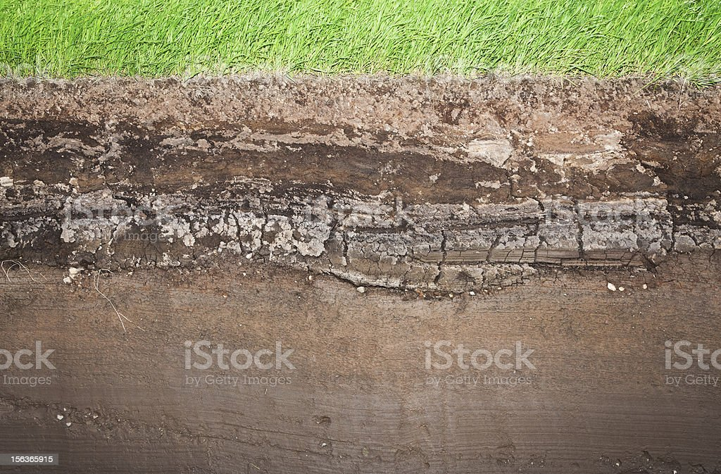 Real Grass and several underground soil layers royalty-free stock photo
