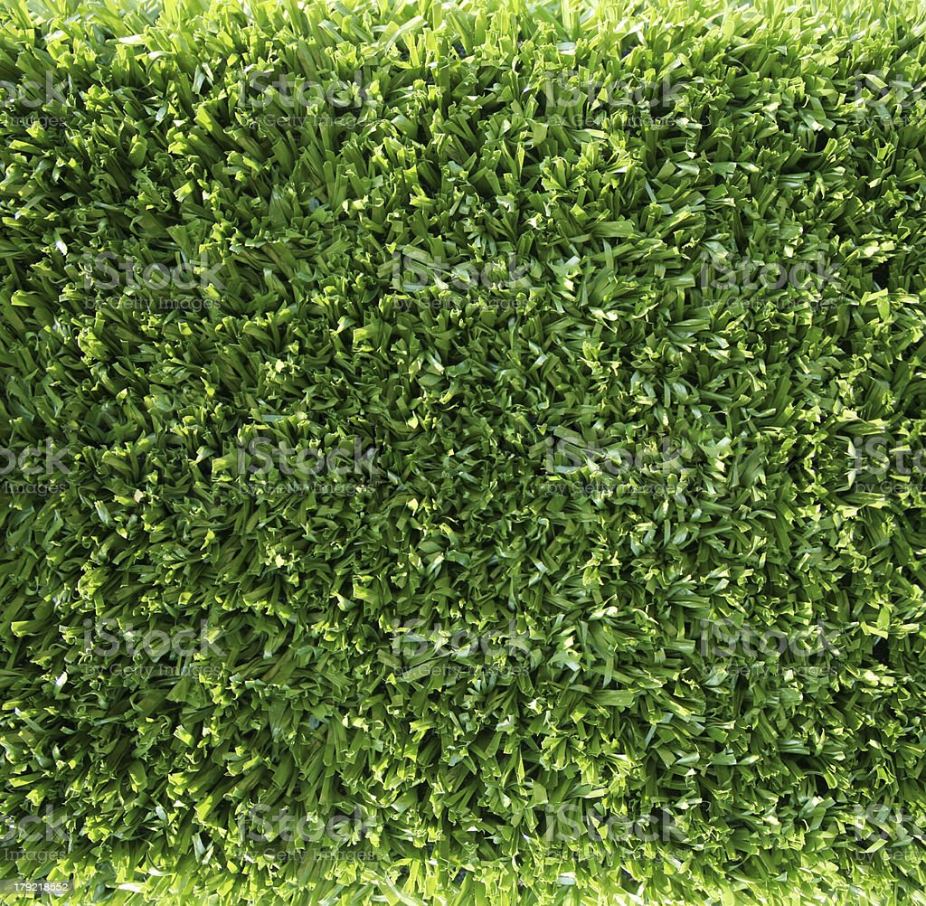 real green grass background royalty-free stock photo
