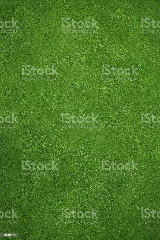 Real green grass background stock photo