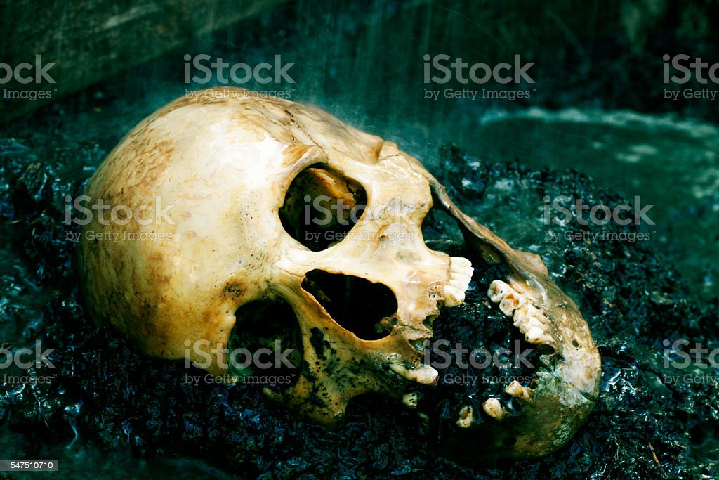 Real human skull as crime scene, color manipulated, narow focus stock photo