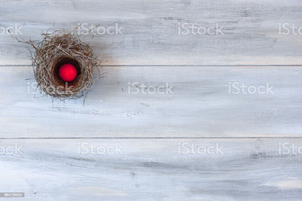 Real natural nest with egg isolated on blue wooden table, Easter. stock photo